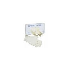 Disposable Vinyl Gloves Pk/100