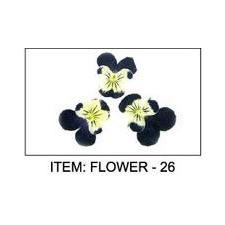 Dried Flower #26